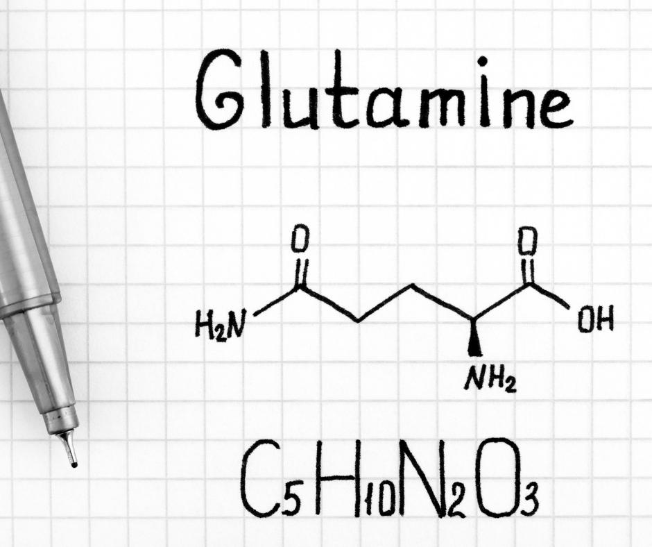 glutamine for endurance